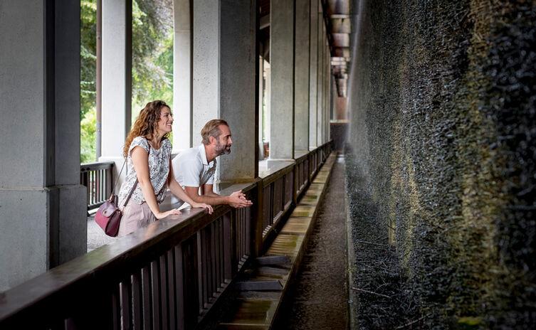 Alpine brine inhalation at the royal spa garden