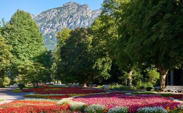 Blumen Im Koeniglichen Kurgarten 2