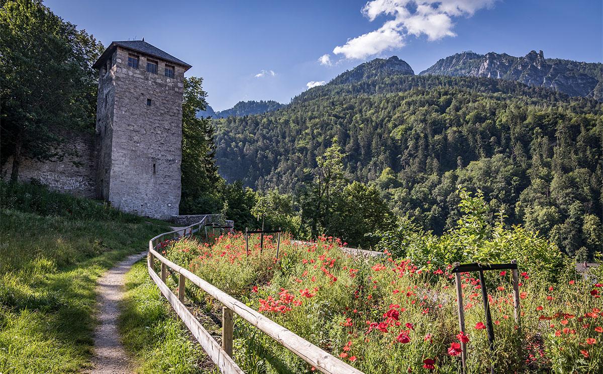 Burg Gruttenstein 16