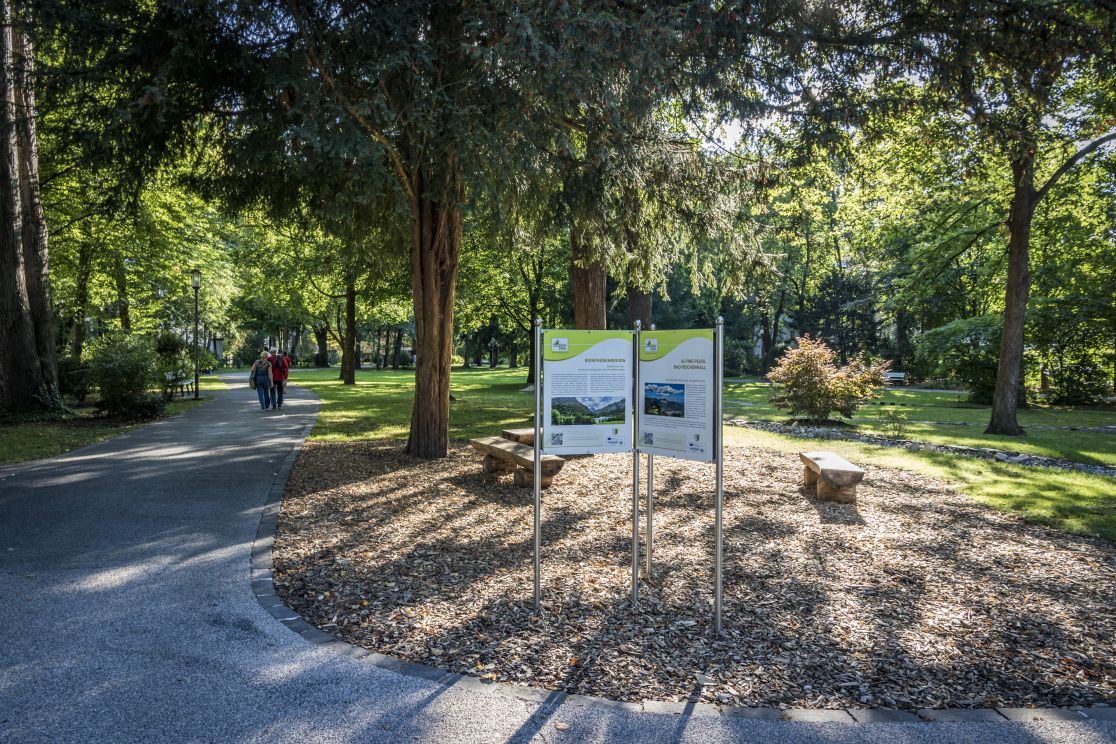 Ortenaupark