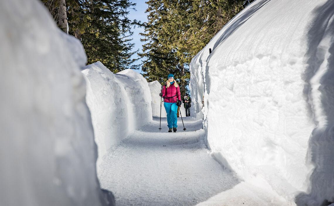 Winterwandern am Predigtstuhl