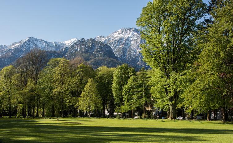 Rupertuspark im Frühling