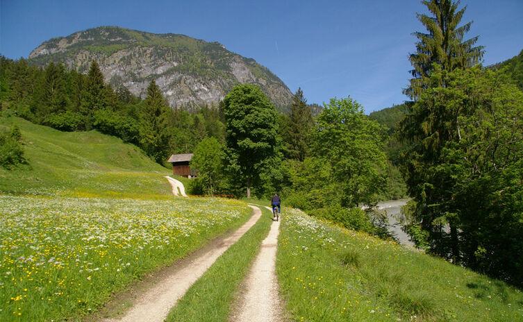 Saalachtal Radweg