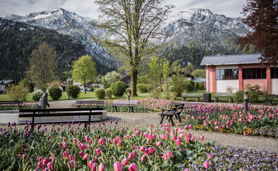 Spa Garden at the Visitor Center