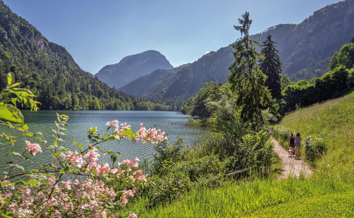 Der Thumsee | Natur nahe der Alpenstadt Bad Reichenhall