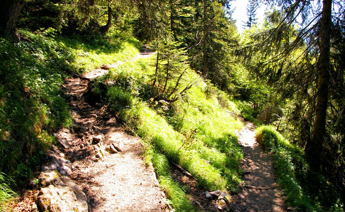 Wanderweg Zur Zwieselalm