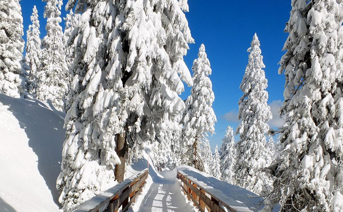 Winterwandern auf dem Predigtstuhl © Erich Steindl
