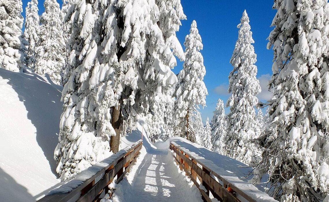 Winterwanderung Zur Schlegelmulde