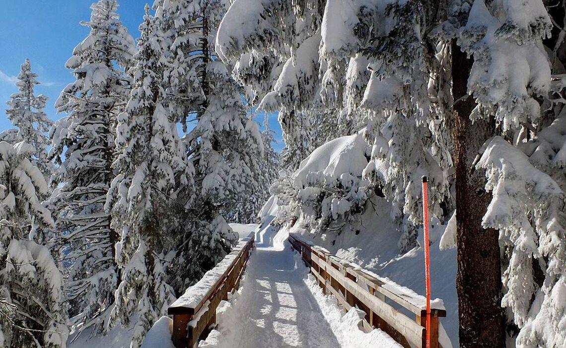 geräumter Winterwanderweg am Predigtstuhl © Erich Steindl